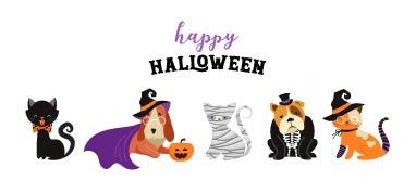 Happy Halloween Cats and Dogs in Costumes